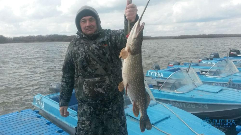 Рыбалка на ахтубе весна